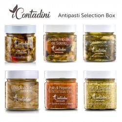 Antipasti Selection Box Number 2